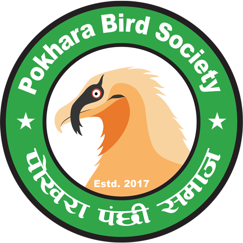 Pokhara Bird Society